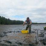 Deploying sediment buffering into a plot in the field