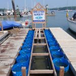 Soft-shell clam nursery upweller at the South Freeport dock in August 2014