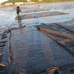 A portion of netting is peeled back to allow a benthic core to be taken (Collins Cove, Freeport, Maine - 12 July 2014).