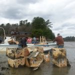 Cleaning up after planting the adult clams and installing netting at Spar Cove on May 6, 2014.